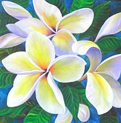 Plumeria Paintings - Plumeria Blossoms by Jerri Grindle