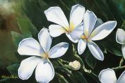 Plumeria Paintings - Plumeria I by Han Choi - Printscapes