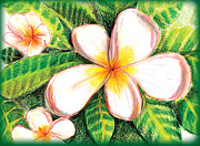 Shelley Myers - Plumeria With Foliage