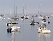 Plymouth Harbor Prints - Plymouth Harbor Print by Lori Lafargue
