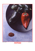 Wooden Bowl Prints - Poblano Pepper Print by Jerry Taliaferro