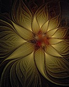 Framed Art Digital Art - Poinsettia in Gold by Amanda Moore