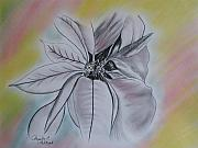 Paula Peltier - Poinsettia on Pastel