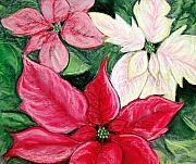 Christmas Greeting Pastels Framed Prints - Poinsettia Pastel Framed Print by Nancy Mueller