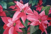 Poinsettias Paintings - Poinsettia Trio by Tina  Sander