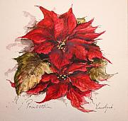 Poinsettias Paintings - Poinsettias by Yvonne Ayoub