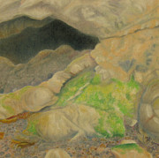 Earth Pastels - Point Lobos 4 by Marcia  Perry