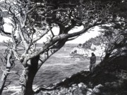 Seascape Drawings Originals - Point Lobos by David Clemons