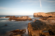Point Park Originals - Point Lobos Number Three by Catherine Lau