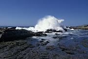 Point Lobos Seascape 2 Print by Stan and Anne Foster