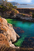 Point Lobos Reserve Art - Point Lobos State Reserve California by Utah Images