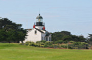 Golf Course Posters - Point Pinos Light - Lighthouse on the golf course - Pacific Grove Monterey Central CA Poster by Christine Till