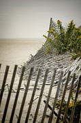 Sand Fences Posters - Point Pleasant Beach Poster by Heather Applegate
