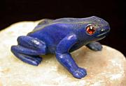 Carving Sculptures - Poison Arrow Frog by Jason Nelson