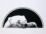Polar Drawings Prints - Polar Bear Print by Elizabeth Halfacre