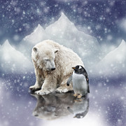 Bear Photos - Polar Bear Meets Penguin by Ethiriel  Photography