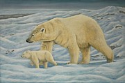 Concentration Originals - Polar Bear by Sid Ball