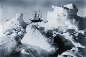 Survival Acrylic Prints - Polar Explorer, Ernest Shackletons Acrylic Print by Everett