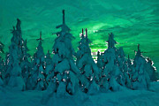 Pole Painting Prints - Polar Nights Print by Stefan Kuhn