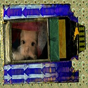 Aluminum Digital Art Originals - Polaroid Baby by Gini Holmes