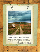 Bible Verse Framed Prints - Polaroid on Weathered Wood with Bible Verse Framed Print by Jill Battaglia