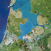 Land Reclamation Prints - Polders, Satellite Image Print by Planetobserver