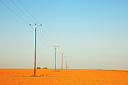 Telephone Pole Prints - Poles In Field Print by Klaus W. Saue