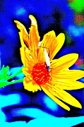 Stink Bug Digital Art - Pollinate by Xn Tyler