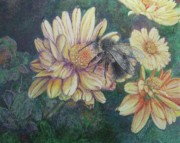 Bumblebee Drawings - Pollination by Lorraine McFarland