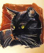 Cats Originals - Pollux by Francoise Dugourd-Caput