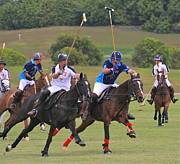 Andrea Urlass - Polo at Lions Castle