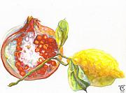 Food And Beverage Pastels - Pomegranate and Lemon by Cameron Hampton PSA