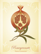 Carrieann Reda Posters - Pomegranate Poster by CarrieAnn Reda