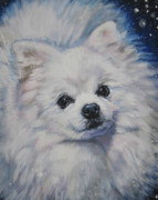 Pomeranian Framed Prints - Pomeranian in snow Framed Print by Lee Ann Shepard