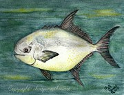 Chris Bajon Jones - Pompano Bob