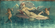 Aphrodite Paintings - Pompeii, Italy: Venus by Granger