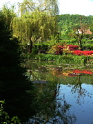 Eure Metal Prints - Pond At Giverny3 Metal Print by Danny Cieloha