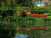 Eure Metal Prints - Pond At Giverny4 Metal Print by Danny Cieloha