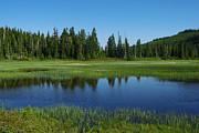 Marilyn Wilson - Pond at Paradise Meadows