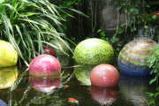 Shelly Davis - Pond Garden Balls