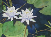 White Waterlily Paintings - Pond in Summer by Anita Riemen