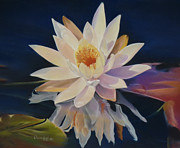 Botanical Pastels Originals - Pondering Nymphaea by Nanybel Salazar