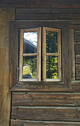 Cabin Window Photos - Pondering the Woods by Cheri Randolph