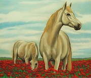 White Horses Pastels Framed Prints - Ponies and Poppies Framed Print by Lucy Deane