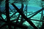 Sami Sarkis - Pontoon underwater