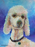 White Poodle Framed Prints - Poodle Proud Framed Print by Deb Magelssen