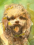 Clip Drawings Prints - Poodle-Watercolor Print by Gordon Punt