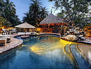 Palmetto Plants Photos - Pool at a Tropical Resort by Skip Nall