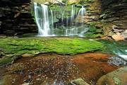 Adam Jewell - Pool Below The Falls