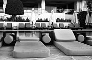Lounges Photos - Pool Life by John Rizzuto